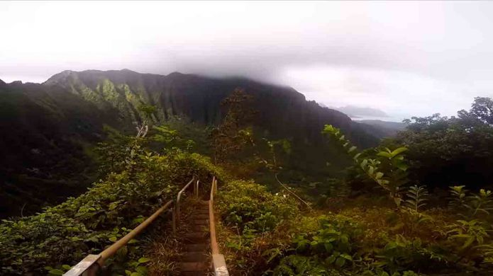 Trail Haiku: mysterious ..ladder to heaven.. in Hawaii
